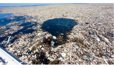 Photo Environmental pollution - Why we must protect the environment