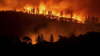 Photo Forest fires as an environmental problem